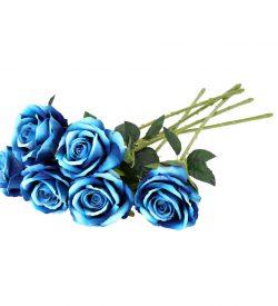 رز-عکس-گل-رز-زیبا-گلهای-های-محمدی-آبی