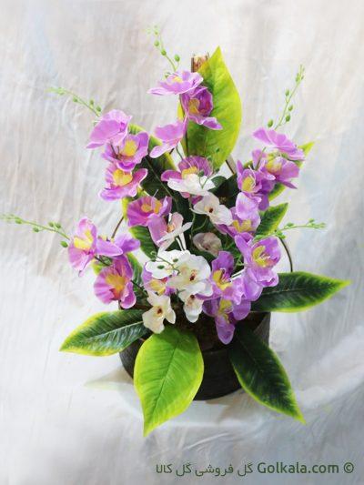 گل ارکیده - سبد گل ارکیده