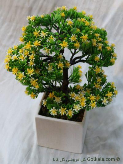 درختچه بنسای, گلدان بنسای, گل تزئینی