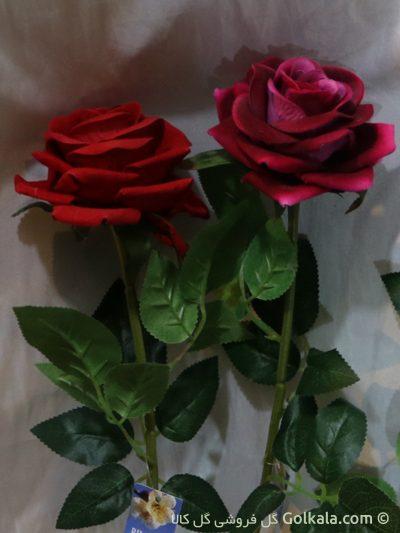 رز جیر, عکس گل رز قرمز, گل رز سرخابی
