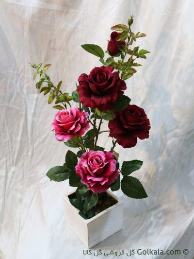 گلدان رز قرمز صورتی هلندی - گل زیبا - گل کالا
