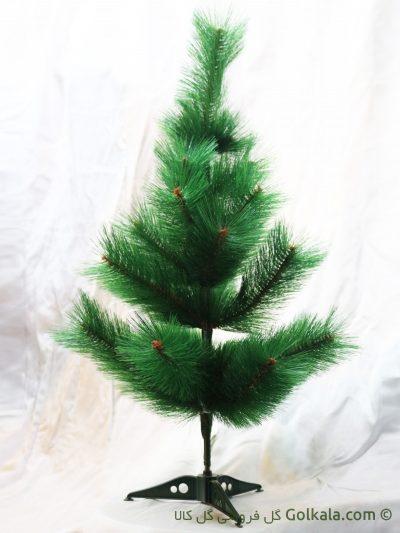 درختچه کاج کوتاه, کاج