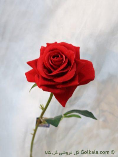 گل رز مصنوعی - خرید شاخه گل