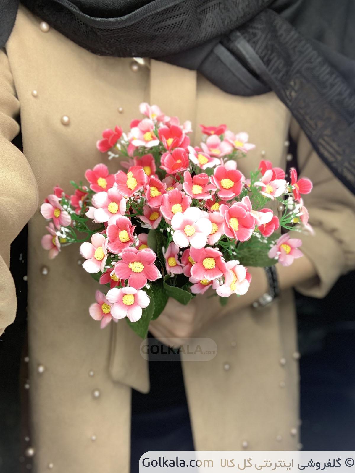 گل بهاره گل کالا