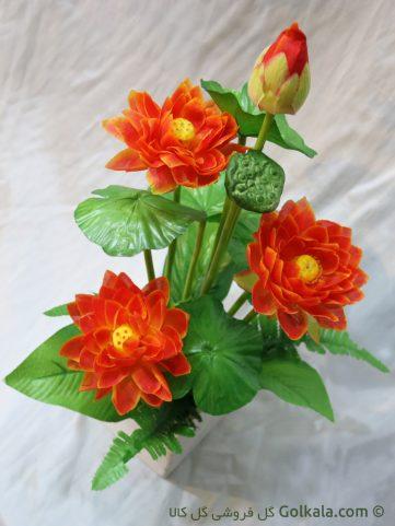 گل نیلوفر مرداب