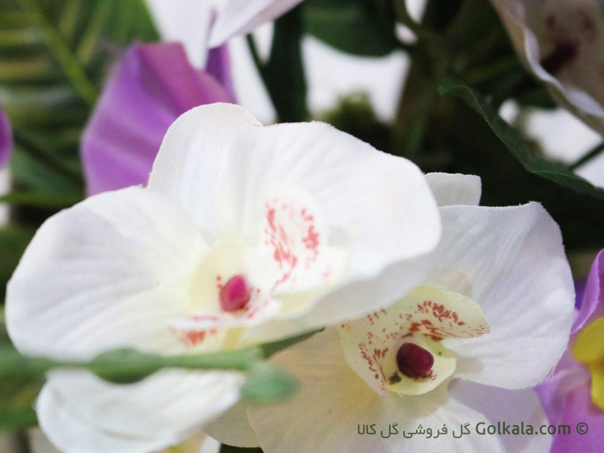 عکس گل ارکیده - سبد گل ارکیده