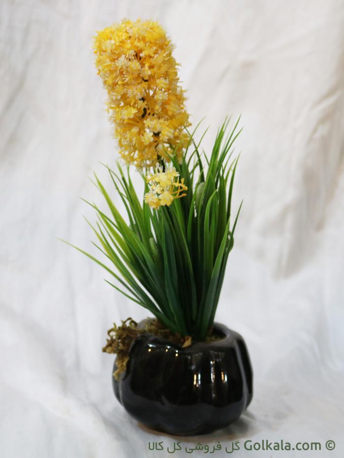 گل سنبل زرد-گل فروشی آنلاین
