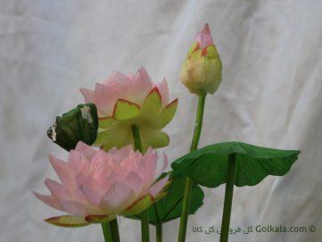 گل نیلوفر مصنوعی - گل نیلوفر مرداب