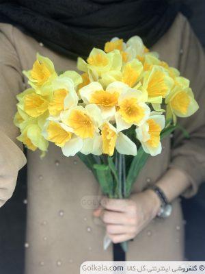 گل-نرگس-زیبا-نرگس-زرد-گل-کالا-سایت-گل-min