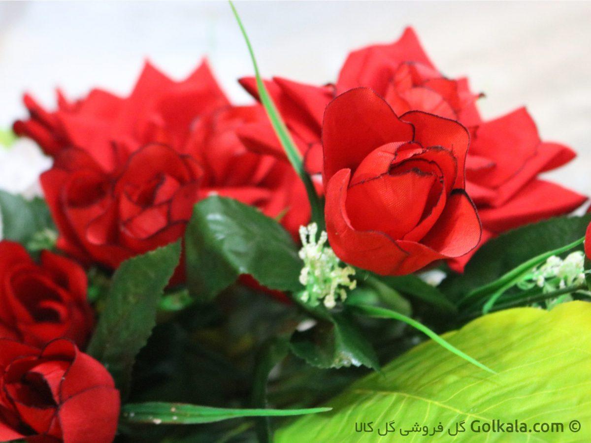 گل رز قرمز, عکس ماکرو رز