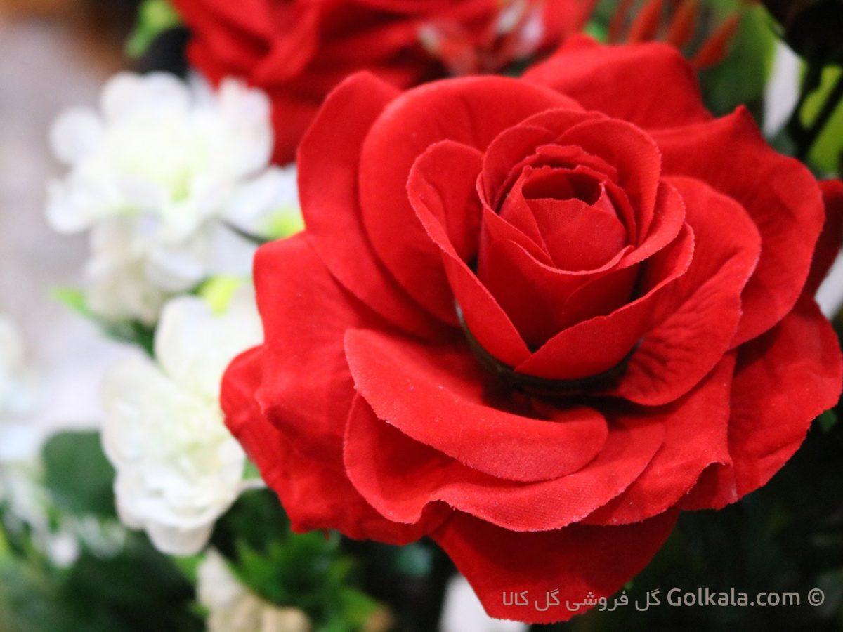 عکس گل های زیبا, کادو, هدیه