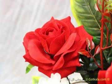 عکس گل سرخ زیبا