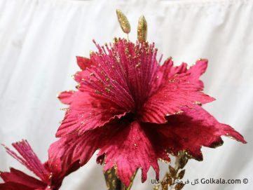 عکس ماکرو گل ختمی صورتی