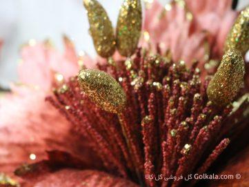 گل ختمی زیبا عکس ماکرو