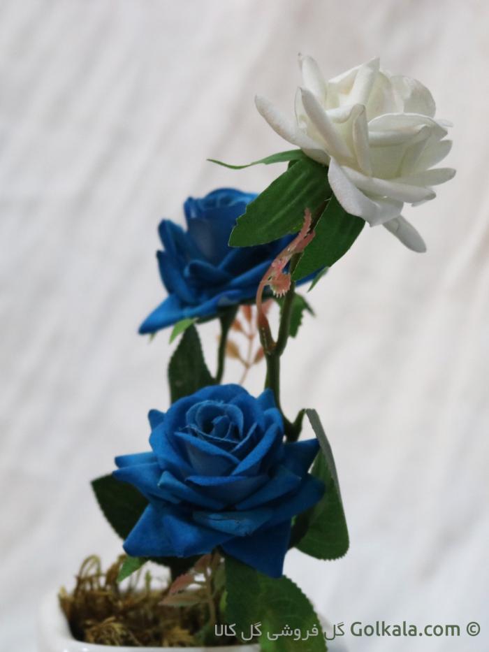 گل رز آبی سفید
