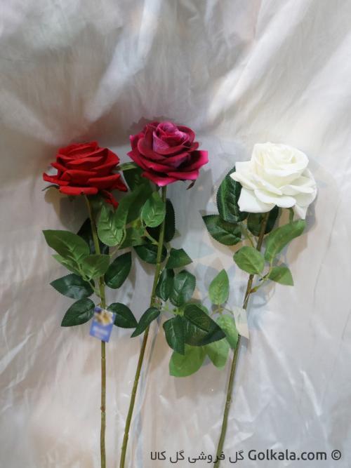 گل رز جیر سفید, قرمز, سرخابی