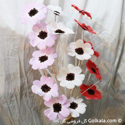 گل شقایق-شقایق برفی با رنگ های متنوع