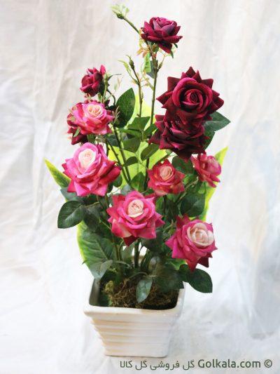 گل رز زیبا - گلدان گل رز قرمز و صورتی - عکس گل رز