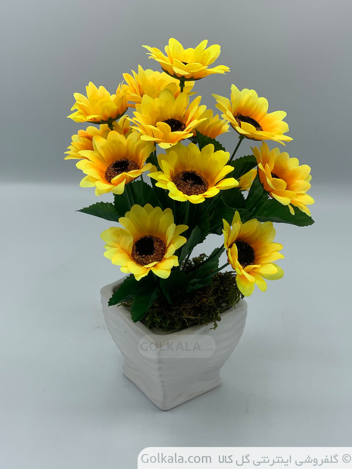 خرید گل آفتابگردان