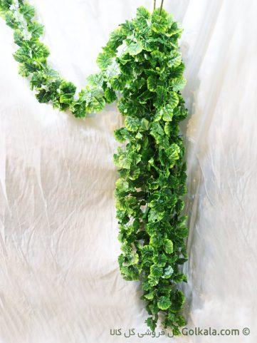 ریسه گل آویزی برگ سبز پیچک مصنوعی, پیچک مصنوعی, گیاهان آپارتمانی