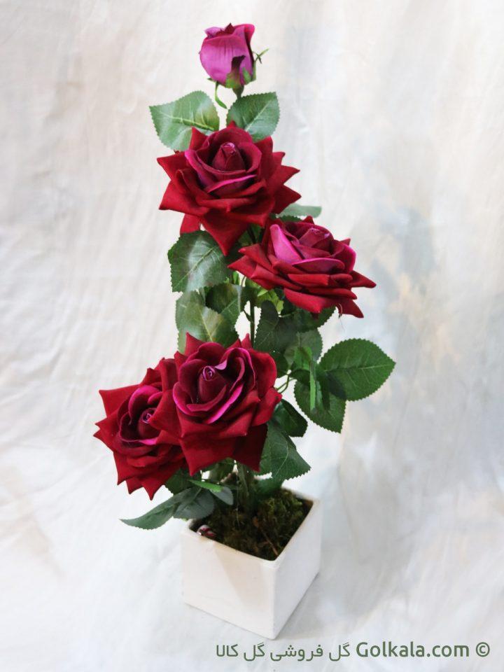 گلدان گل رز لمسی , گل رز سرخابی