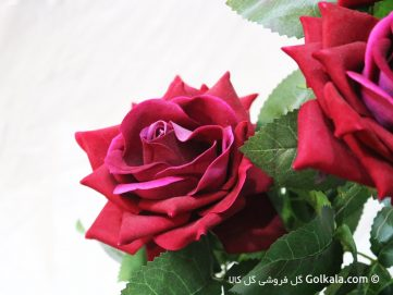 گلدان گل رز لمسی زیبا