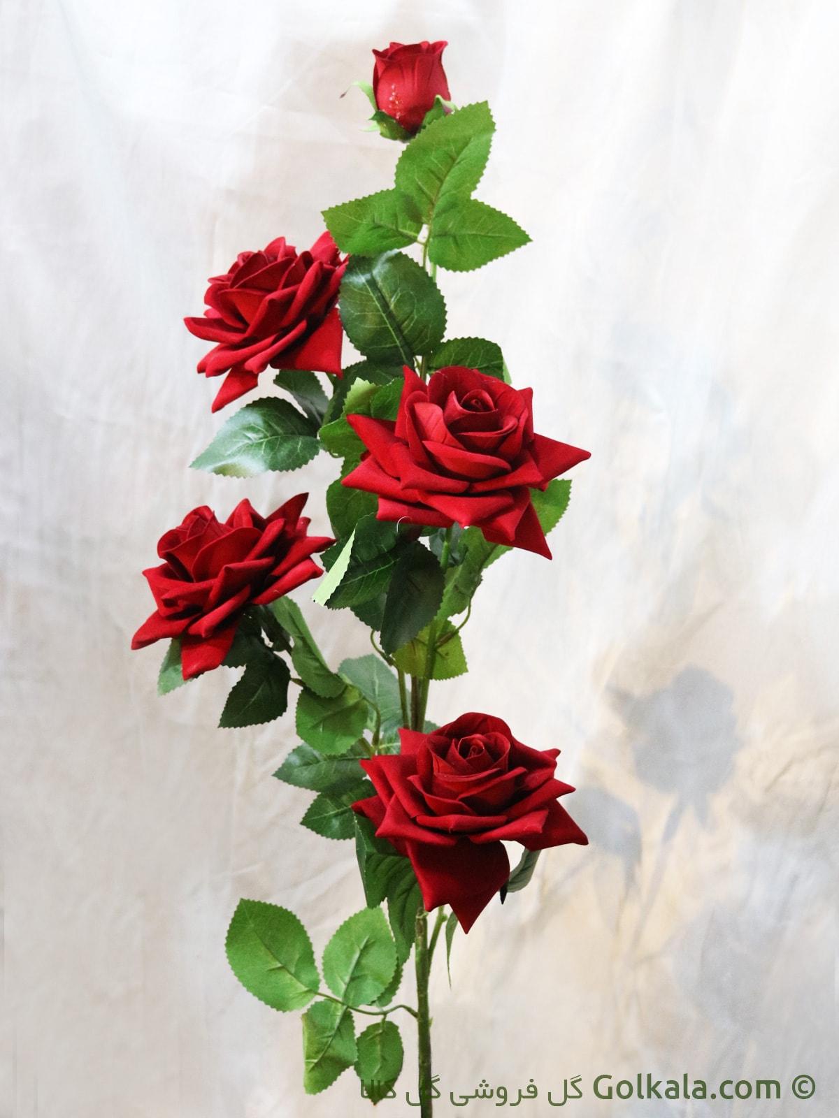 گالری عکس های گل رز قرمز عاشقانه سری اول   عکس گل رز سرخ زیبا