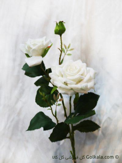 خرید گل - گل رز سفید