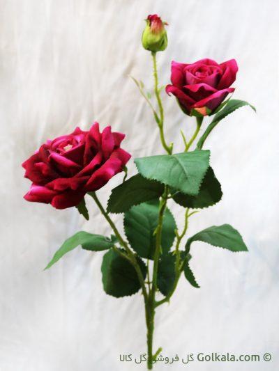 گل رز قرمز, شاخه گل رز قرمز