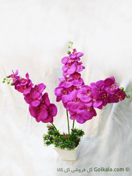 گلدان گل ارکیده - ارکیده ارغوانی