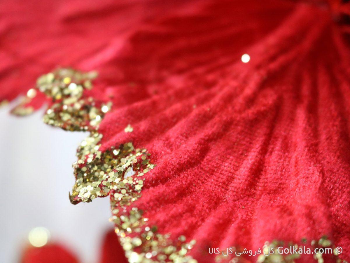 گلبرگ گل ختمی قرمز