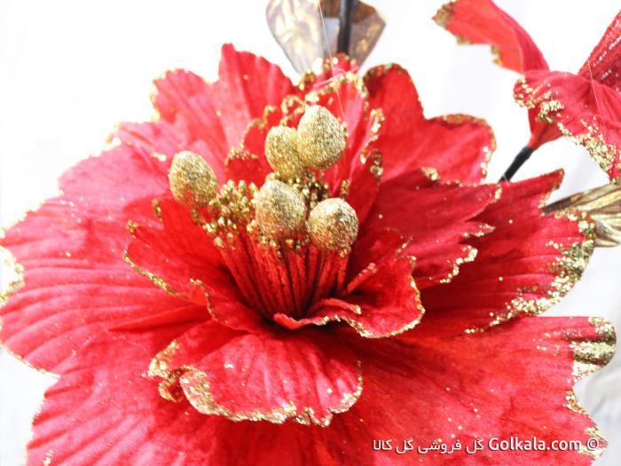 تصویر گل ختمی قرمز
