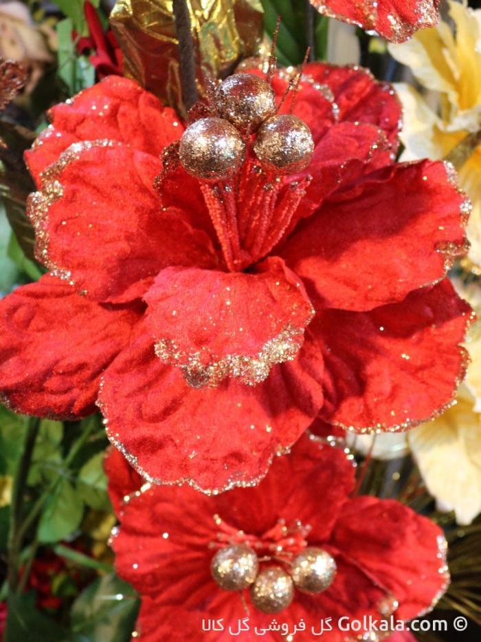 تصویر گل زیبا گل ختمی