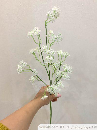 شاخه گل عروس گل کالا