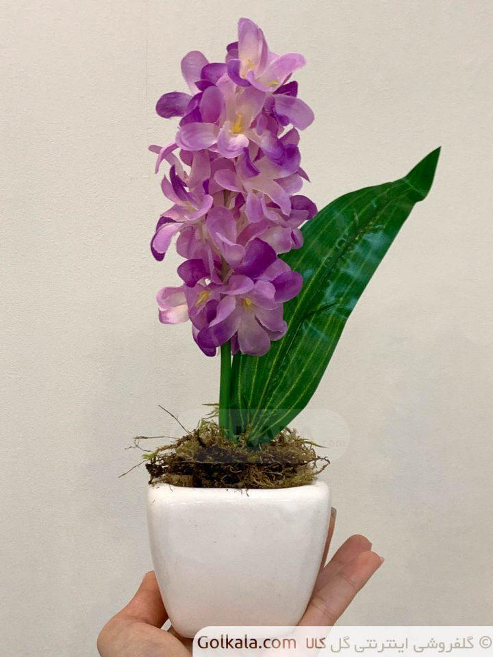 گلدان سنبل متوسط بنفش گل کالا